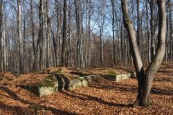 Leśna Góra i jej historia - spacer poznawczy