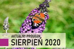 Aktualny program sierpień 2020