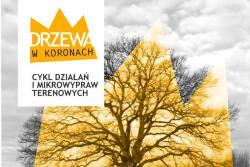 Drzewa w koronach - cykl działań i mikrowypraw terenowych